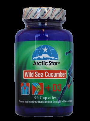 Arctic-Star-Sea-cucumber-D3-a1