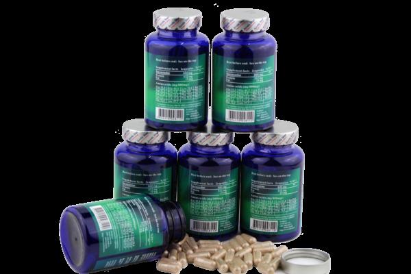 Arctic Star Sea cucumber capsules 6 bottles - 480 capsules
