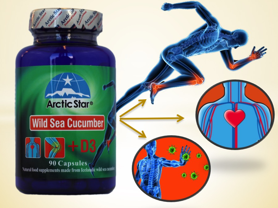 Arctic-Star-Sea-cucumber-D3-capsules help to reduce joint pains and stiffness, help to improve blood flow, help to maintain healthy and strong bones and muscles. Immune booster